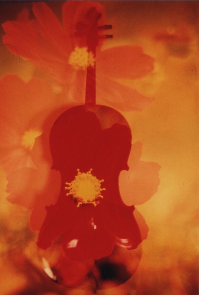 cello cosmos